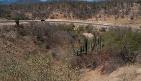 Carretera en el desierto Imagen de archivo