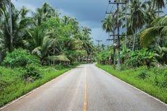 Carretera en las zonas tropicales Fotografía de archivo