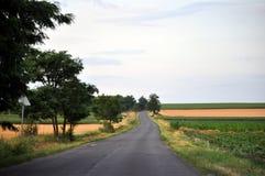 Carretera entre los campos agrícolas Fotos de archivo libres de regalías