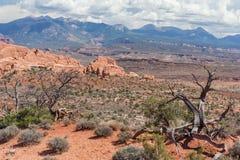 Carretera escénica entre las dunas aterrorizadas y el horno ardiente en el parque nacional Utah los E.E.U.U. de los arcos Foto de archivo