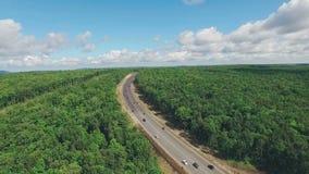 Carretera moderna a través del bosque de hojas caducas denso en Rusia, visión aérea metrajes