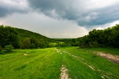 Carretera nacional abajo de la colina a través del bosque Imágenes de archivo libres de regalías
