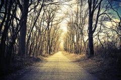 Carretera nacional arbolada de la grava Vintage, mirada retra Dirección o concepto de la trayectoria Fotos de archivo