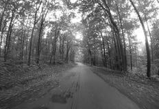 Carretera nacional blanco y negro Imagen de archivo libre de regalías