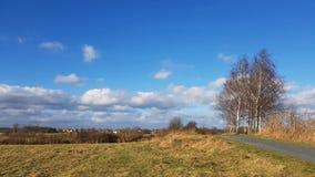 Carretera nacional con los árboles de abedul en una zona rural de Berlín en un sol Fotografía de archivo libre de regalías