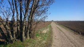 Carretera nacional de la pizca del campo del otoño Fotos de archivo
