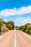 Carretera nacional del desierto en verano Imagen de archivo