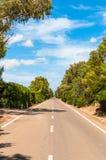 Carretera nacional del desierto en verano Fotografía de archivo libre de regalías