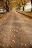 Carretera nacional del otoño Imágenes de archivo libres de regalías