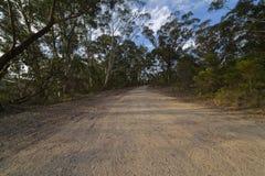 Carretera nacional en el bosque de la montaña del eucalipto, montañas azules, Aust Fotografía de archivo