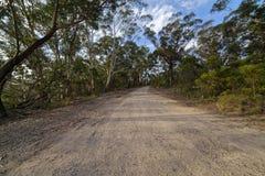 Carretera nacional en el bosque de la montaña del eucalipto, montañas azules, Aust Fotos de archivo libres de regalías