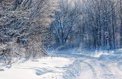 Carretera nacional en el bosque del invierno de la nieve Fotografía de archivo