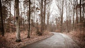 Carretera nacional en el bosque en día brumoso Foto de archivo