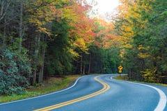 Carretera nacional en la caída Fotografía de archivo