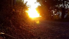 Carretera nacional en la puesta del sol