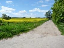 Carretera nacional en Polonia septentrional Foto de archivo libre de regalías