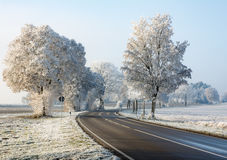 Carretera nacional en un paisaje del invierno con los árboles helados Fotos de archivo libres de regalías