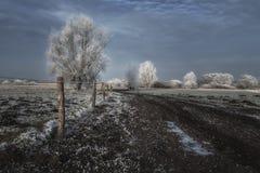Carretera nacional holandesa Fotografía de archivo libre de regalías