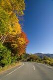Carretera nacional japonesa Imagen de archivo libre de regalías