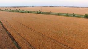 Carretera nacional a través de los argumentos agrícolas, vídeo aéreo almacen de video