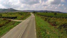 Carretera nacional a través de los viñedos en alguna parte en Dobrogea, Rumania almacen de metraje de vídeo