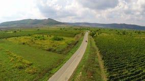 Carretera nacional a través de los viñedos en alguna parte en Dobrogea, Rumania metrajes