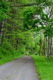 Carretera nacional vieja Imagen de archivo libre de regalías