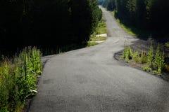Carretera nacional vieja en el bosque a explorar Fotos de archivo