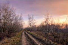 Carretera nacional vieja en la luz de la puesta del sol del otoño Imagen de archivo libre de regalías