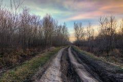 Carretera nacional vieja en la luz de la puesta del sol del otoño Fotografía de archivo libre de regalías