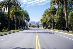 Carretera principal que lleva al campus de Stanford Imagen de archivo libre de regalías