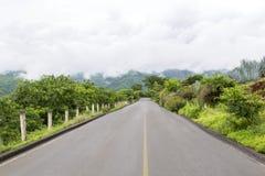Carretera rodeada de naturaleza fotografia de stock royalty free
