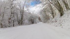 Carretera a través de un bosque en el invierno, GoPro almacen de video