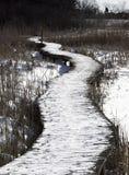 Carretera a través del pantano Foto de archivo libre de regalías