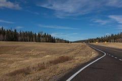 Carretera vacía a través del campo colorido de la caída en Arizona Imágenes de archivo libres de regalías