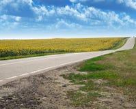 Carretera y campo Foto de archivo