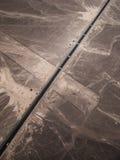 carretera y líneas Cacerola-americanas visión de Nazca del pequeño avión Foto de archivo libre de regalías