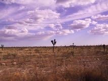 Carretera Zacatecas arkivfoto