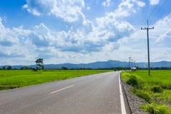 Carreteras nacionales con el campo de maíz Foto de archivo libre de regalías