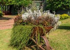 Carretilla adornada con las flores en el jardín Imágenes de archivo libres de regalías