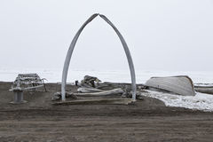 Carretilla Alaska imagen de archivo libre de regalías