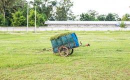 Carretilla con la hierba Imágenes de archivo libres de regalías