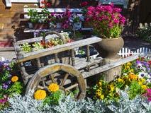 Carretilla con las flores hermosas en el jardín Fotos de archivo