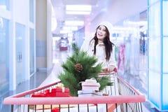 Carretilla de las compras del empuje de la mujer con el árbol de navidad Foto de archivo libre de regalías