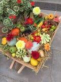 Carretilla del festival de la cosecha Imagen de archivo libre de regalías