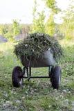 Carretilla del jardín con la hierba cortada Imagenes de archivo