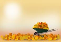 Carretilla en el jardín del otoño Fotografía de archivo