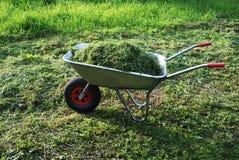 Carretilla en un césped con la hierba fresca Foto de archivo libre de regalías