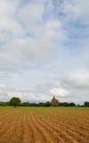 Carretto del bue che ara il solco in Bagan, Myanmar fotografia stock libera da diritti