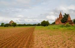 Carretto del bue che ara il solco in Bagan, Myanmar fotografie stock libere da diritti